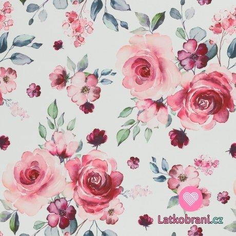 Softshell potisk růže na bílé