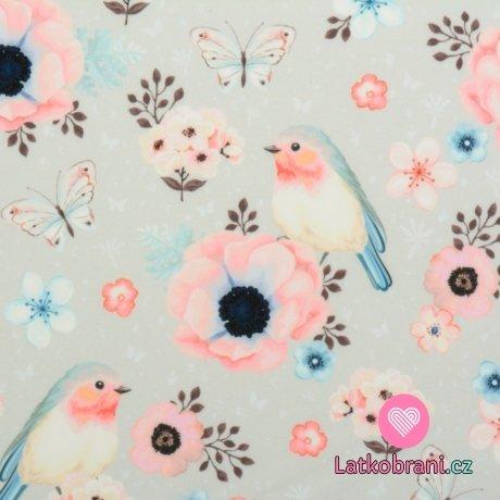 Softshell potisk ptáčci mezi motýlky a květy na šedé