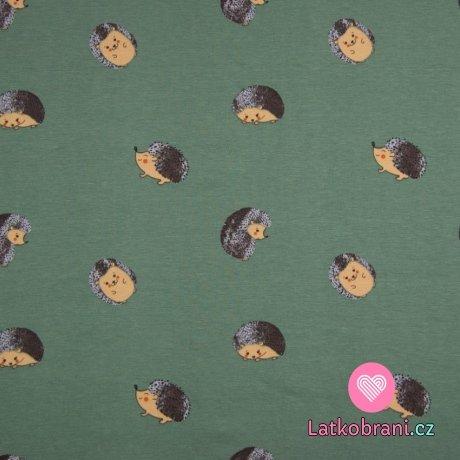 Úplet potisk ježeček v klubíčku na zaprášené zelené