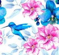 Teplákovina s kolibříky