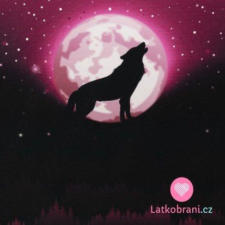 Panel Wolf Moon - vlk za úplňku na růžové