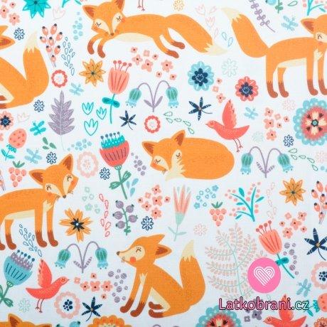 Bavlněné plátno lištička na barevné louce