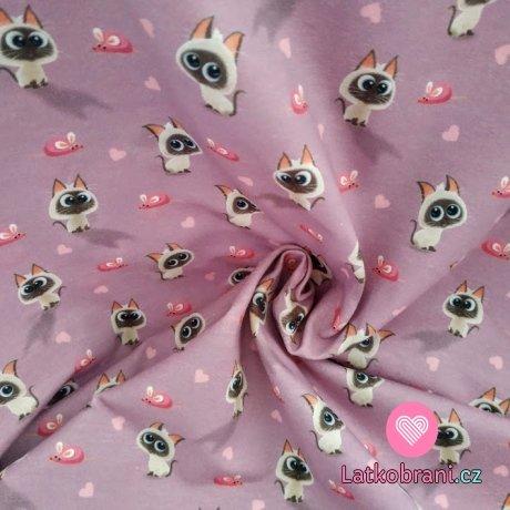 Úplet potisk roztomilá koťátka a myšky na růžovo-fialové