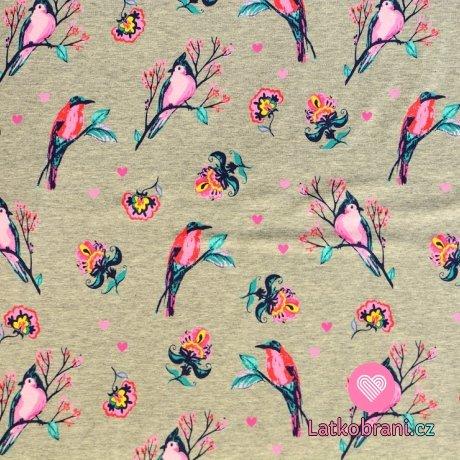 Teplákovina počesaná barevní ptáčci a květy na šedém melé