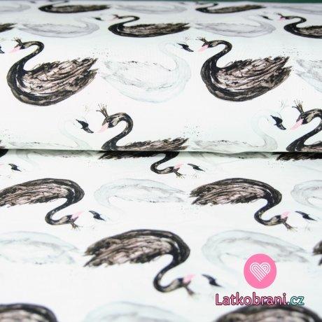 Teplákovina labutě černá a bílá na krémové do bíla