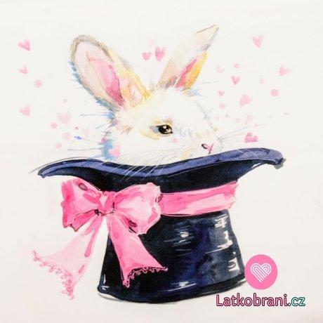 Panel králík v klobouku