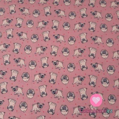 Bavlněné plátno mopsíci mezi srdíčky na růžové