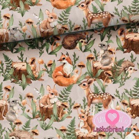 Bavlněné plátno mláďátka z lesa na béžové