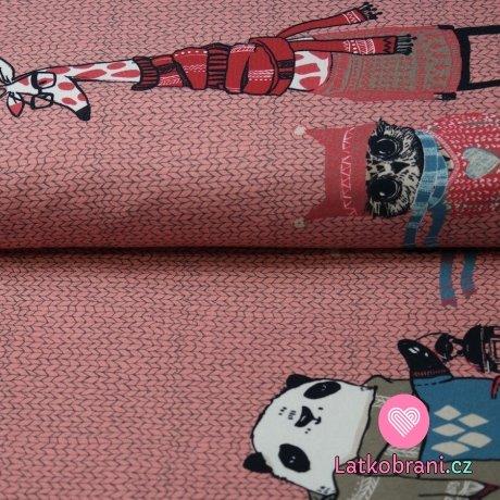 Úplet žirafa, panda v šále na růžové