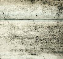 Bordura teplákovina zemina světle šedá