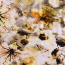 Úplet potisk tajemné květiny žluté