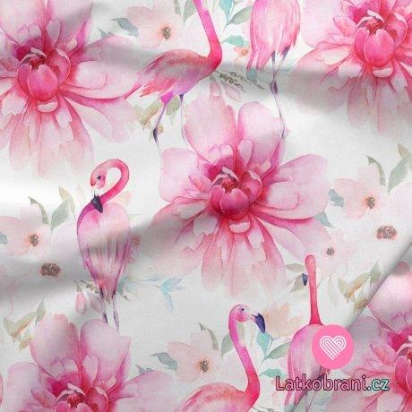 Teplákovina potisk plameňáci mezi růžovými květy na bílé
