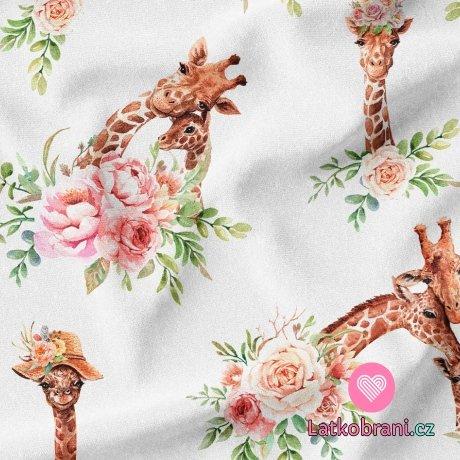 Teplákovina potisk žirafy mezi květy na bílé