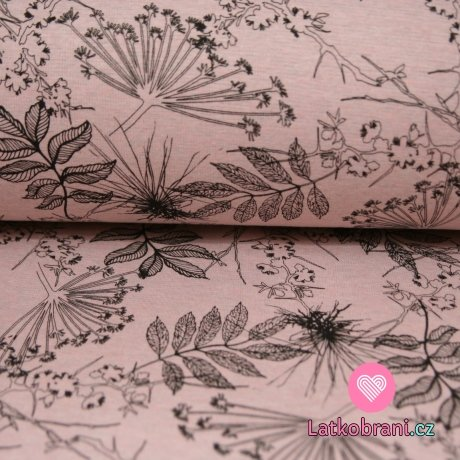 Warmkepeer listy na růžové melé