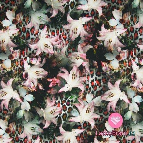 Úplet digitisk lilie na podkladu s leopardím vzorem