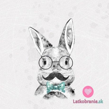 Panel králík džentlmen na šedé