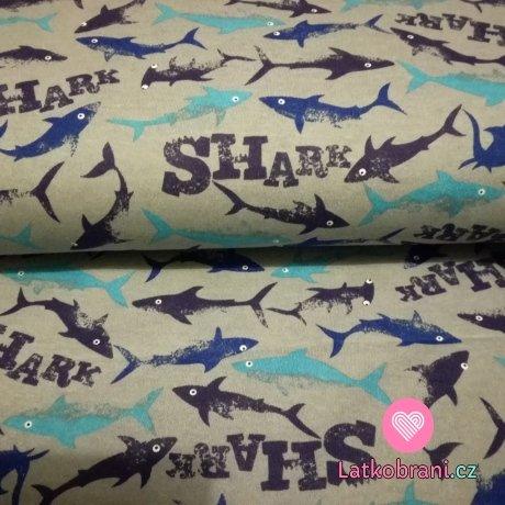 Bavlněný úplet žraloci tyrkys na šedé
