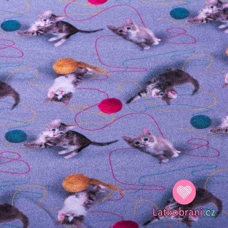 Úplet potisk hravá koťata s klubíčky na modrošedé 180 g