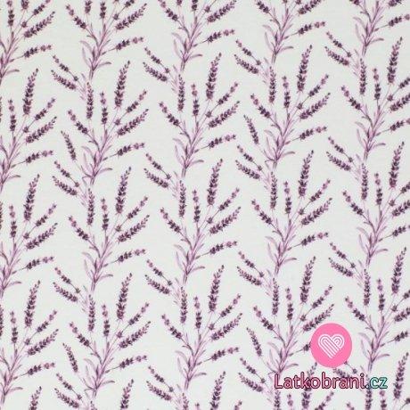 Úplet potisk větvičky levandule na bílé