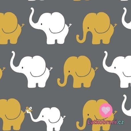 Úplet potisk sloní průvod na tmavě šedé