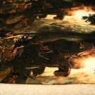 Teplákovina digi dinosaurus pravěk