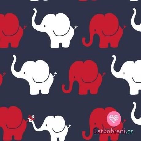 Úplet potisk sloní průvod na tmavě modré