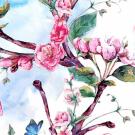 Teplákovina potisk rozkvetlá třešeň s motýlky na obloze