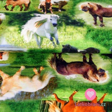 Úplet digitisk koně běhající na trávě