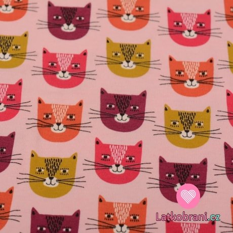 Teplákovina potisk usměvavé barevné kočky na světle růžové