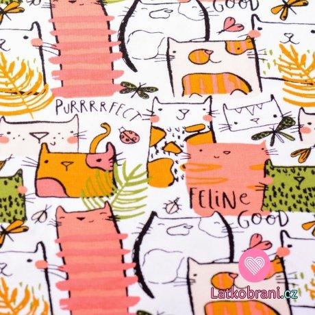 Teplákovina kočky s peříčky a motýlky na bílé