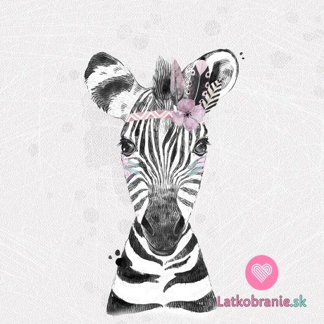 Panel zebra s čelenkou na světle šedé