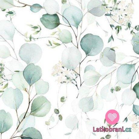 Teplákovina potisk eukalyptus na bílé