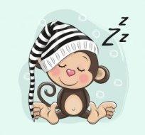 Panel spící opička na mintové