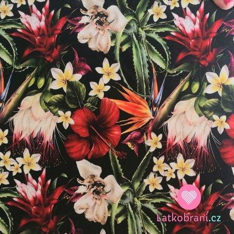 Teplákovina potisk tropické květiny na černé