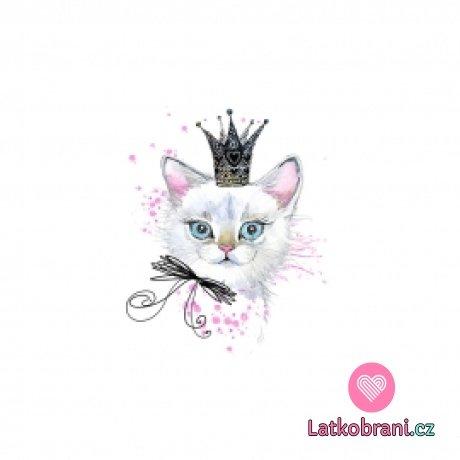 Panel královna koťat na bílé