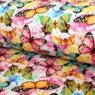 Teplákovina motýlci barevní jako živí