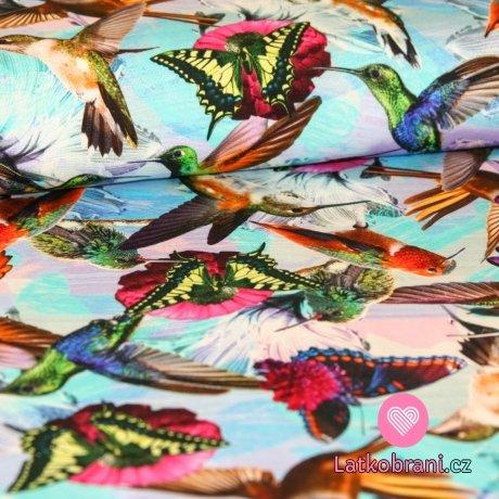Úplet digitisk kolibřík s motýlkem