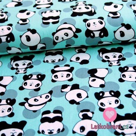 Úplet panda na mátové