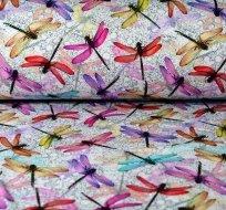 Úplet barevné vážky na bublinkách