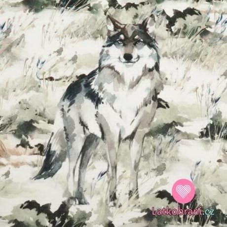 Bavlněný panel vlk v lese 40x40cm