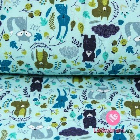 Softshell liška, medvěd, veverka na modroučké