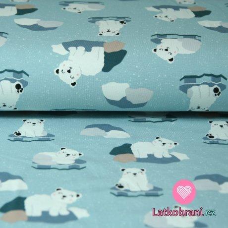 Úplet lední medvěd na kru na modré