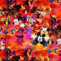 Teplákovina pirát myšák Mickey