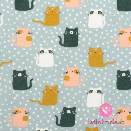 Teplákovina počesaná potisk kočičky na šedomodré, BIO