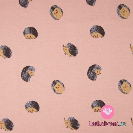 Úplet potisk ježeček v klubíčku na zaprášené růžové