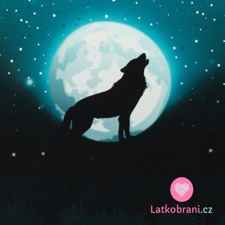 Panel Wolf Moon - vlk za úplňku na tyrkysové